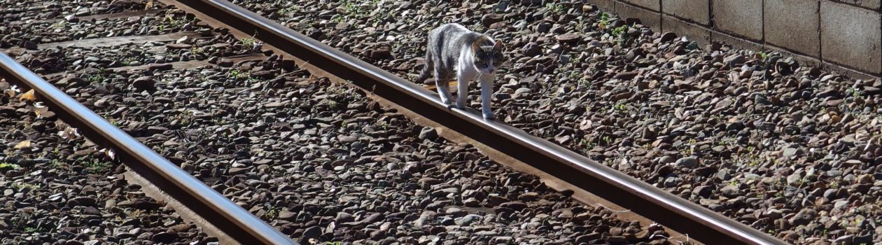 hmdの鐵たび ローカル線の旅 – ページ 2 – のんびりローカル線の長編 ...